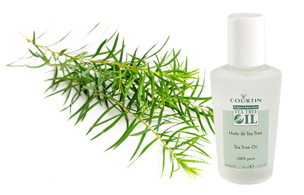 Courtin - Tea Tree olie